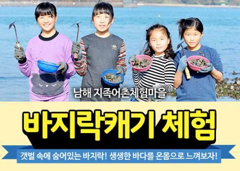 갯벌체험- 바지락조개잡이 체험