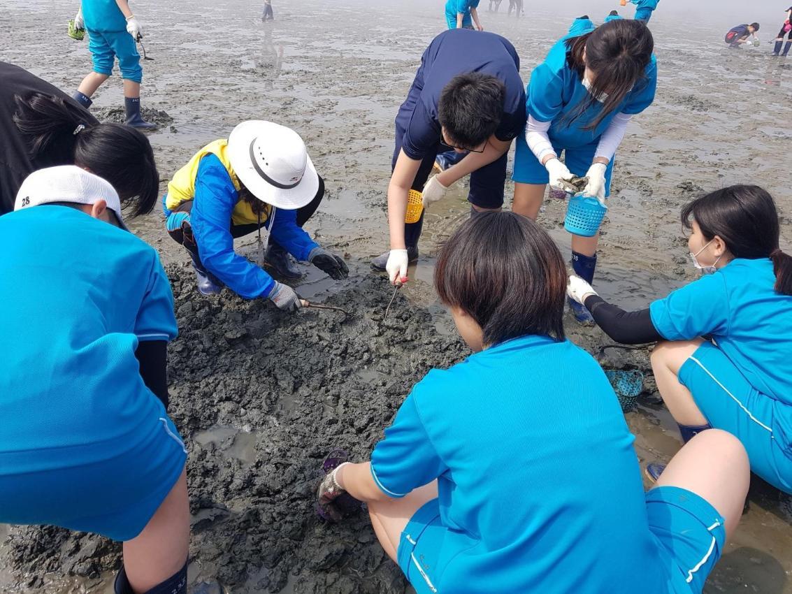 갯벌생태체험