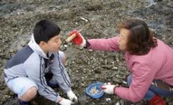 자연산 돌굴따기 체험 2번째 이미지