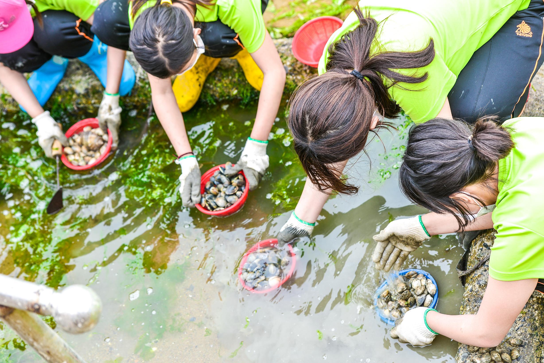 갯벌조개캐기체험 3번째 이미지